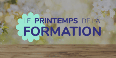 visuel article printemps de la formation